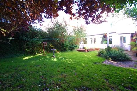 alternate view of rear garden