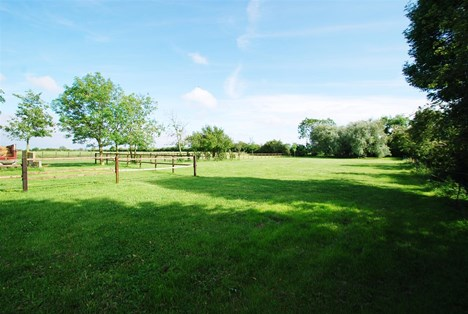 view of paddocks