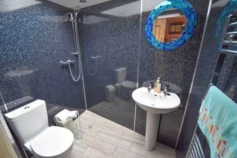 downstairs shower rom